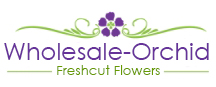 wholesale-orchid.com